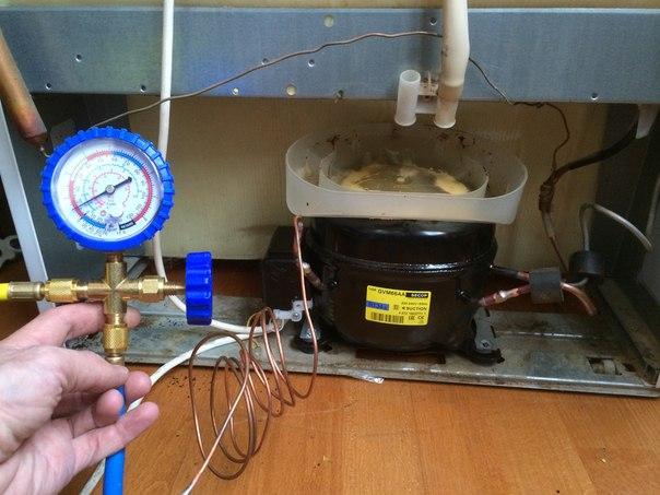 Ремонт холодильника минск своими руками видео